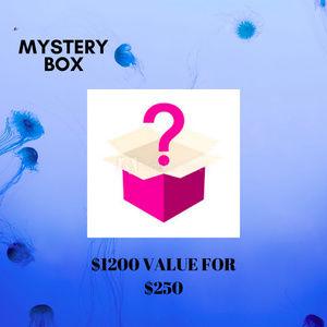 $250 Mystery Box ($1250 Value)
